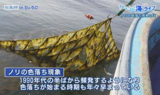ひょうご海ライブ第22回写真2