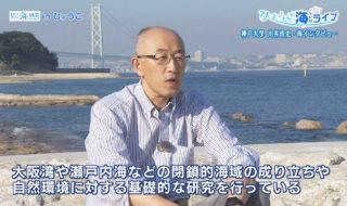 ひょうご海ライブ第24回写真2