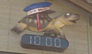 0513カメの時計